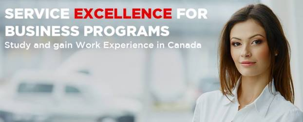 Service Excellence for Business Diploma