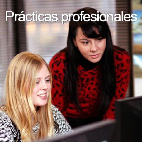practicas profesionales - Work & Study