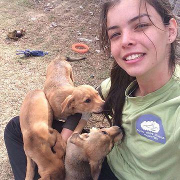 Domestic Animal Shelter - Programa de voluntariado en Sudáfrica y Namibia