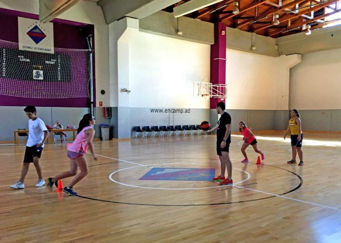 camp rialp basket