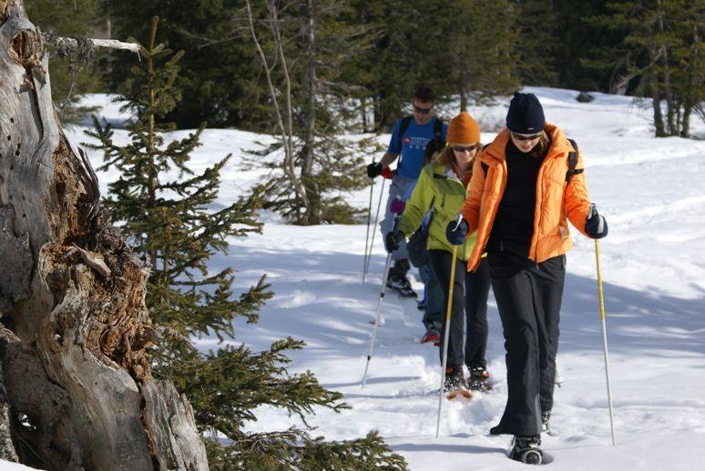 cursos frances annecy esqui - Annecy