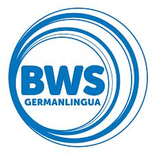 descarga 5 - BWS