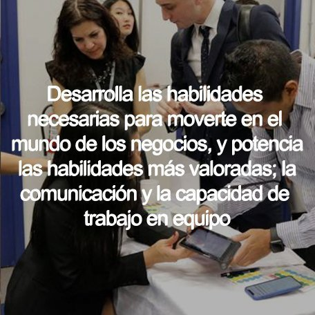 Business Communications Diploma - Business