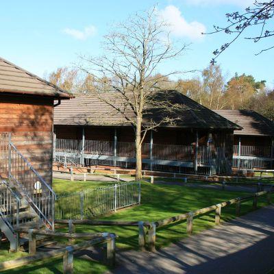 Marchants Hill - Inmersión en campamentos en Reino Unido
