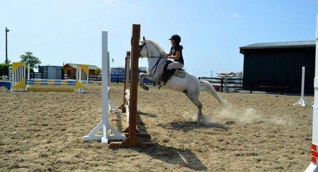 horse-camp-irlanda
