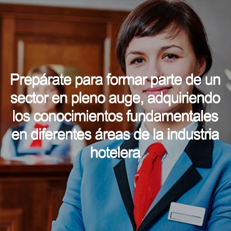 hospitality oparetions diploma - Hospitality & Tourism