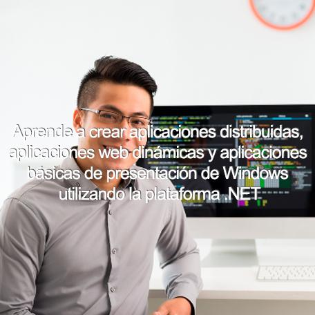 microsoft net technology specialist diploma - Information Technology