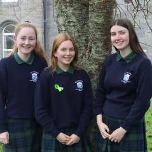 ursuline secondary school - Colegios en Irlanda