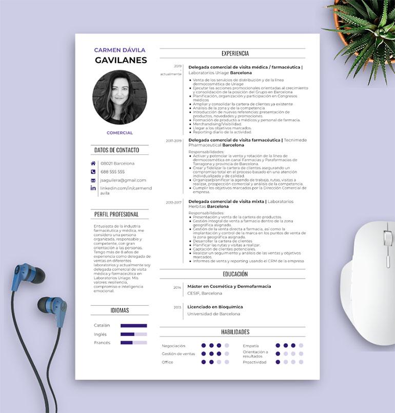 ejemplo 1 de habilidades en tu CV